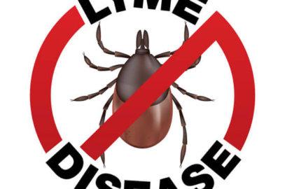 Lymes Disease